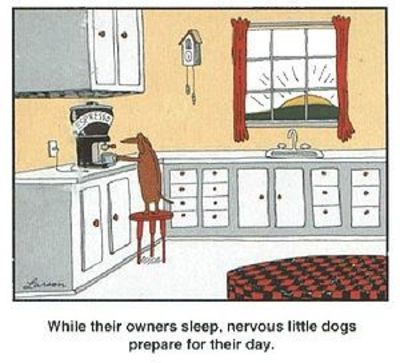 Best Gary Larson Dachshund Cartoon Ever! / christmas xmas ideas ...