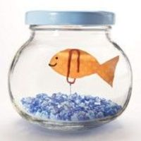 Floating Fish in a Jar!