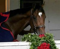 BARBARO....gone but not forgotten!
