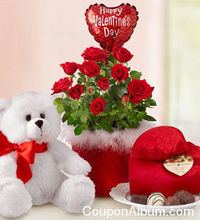 1800 Flowers Valentine's Day Special!