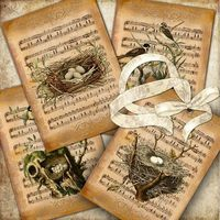 Natural Song cards...