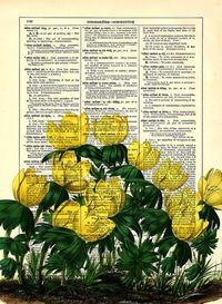 Upcycled Dictionary