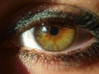 Scientists Develop 'Bionic Eye' That Could Restore Sight To The Blind