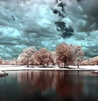 Infrared pic