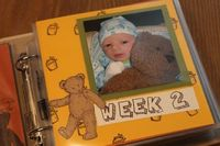 Baby's first year in 52 photos - amazing memory book.