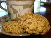 low-fat oatmeal chocolate chip cookies