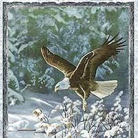 Winter Whispers - Eagle Panel