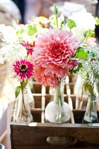Nice table pieces of watermelon dahlias, pink wax flower, geranium foliage, fresh mint, and baby's breath. Created by April Peet of April Flowers.