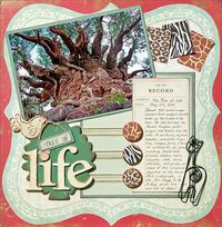 A Project by Madeline from our Scrapbooking Gallery originally submitted 06/27/11 at 08:20 AM