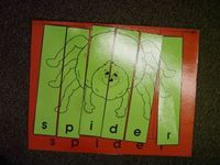 Spider Theme Activities, Lessons, and Teaching Ideas | Little Giraffes Teaching Ideas | A to Z Teacher Stuff