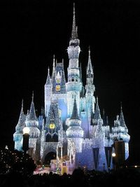 Cinderella's Castle New Year's Eve