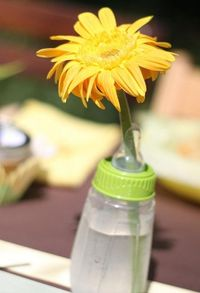 daisy in a bottle as centerpice for baby shower!