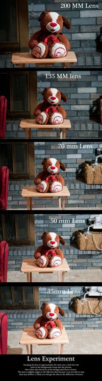 lens examples