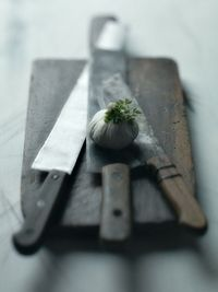 Vintage kitchen knives from Alessandro Guerani