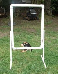 DIY dog agility course pieces