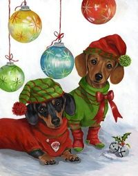Christmas doxies